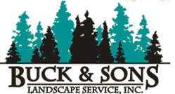 Buck and Sons Landscape Services