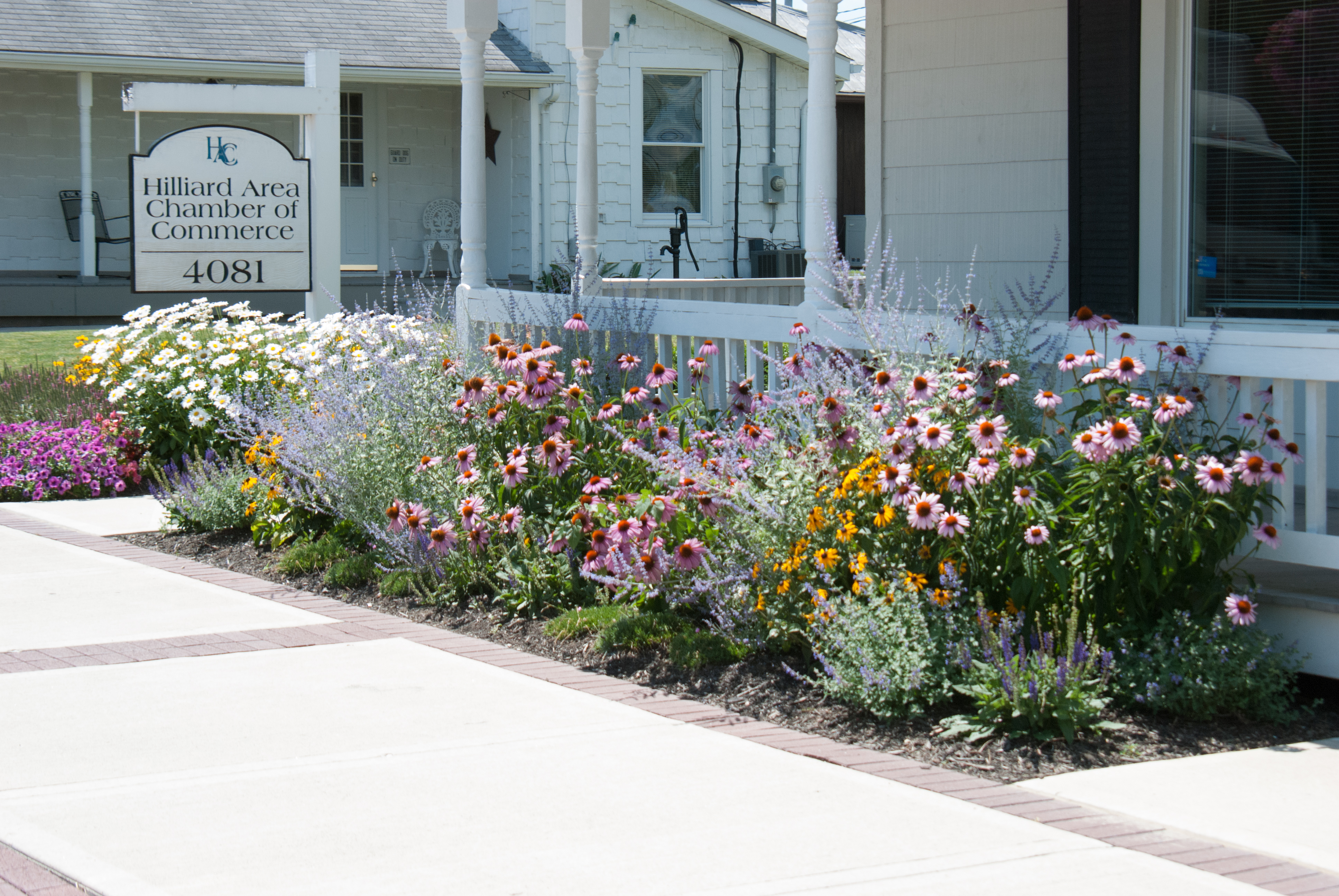 Which plant suits you best buck and sons landscape services we get asked all the time whether to plant annuals or perennials in your flower beds this is a great question and really comes down to the personal izmirmasajfo