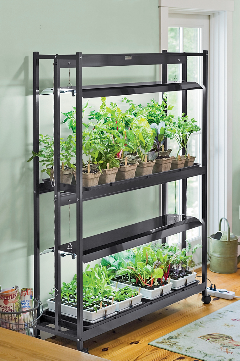 Get a jump on spring by growing your own herbs indoors buck and grow lights workwithnaturefo