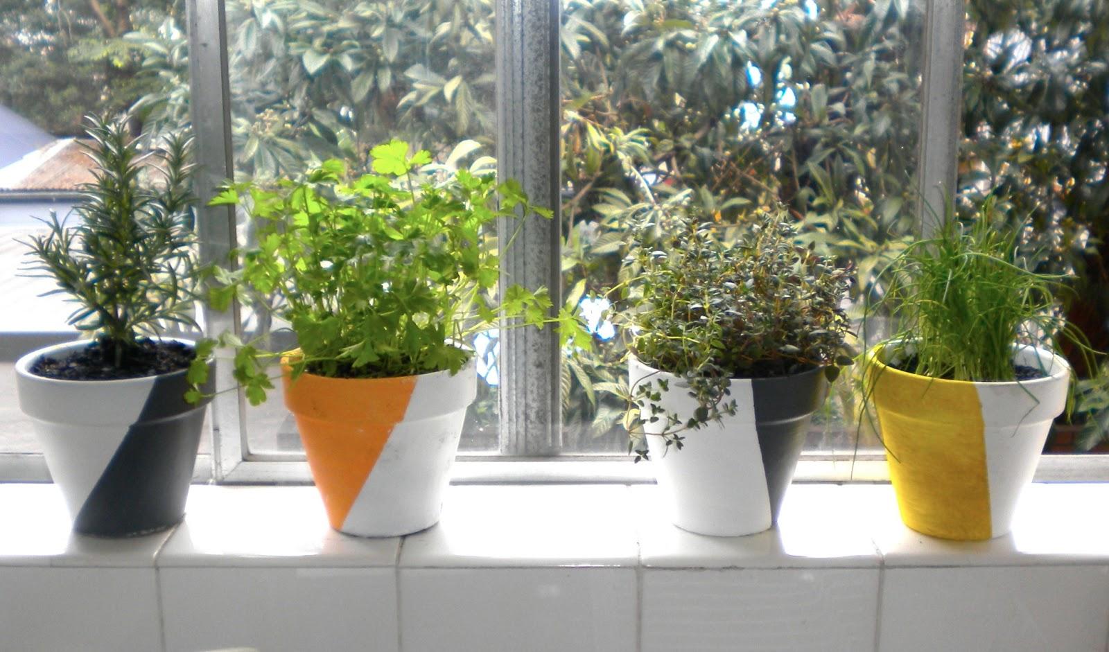 ... Different Plants Easily. Pots